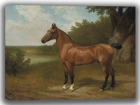 Agasse, Jacques Laurent: Lord Bingley's Hunter in a Wooded River Landscape. Fine Art Canvas. Sizes: A4/A3/A2/A1 (004037)